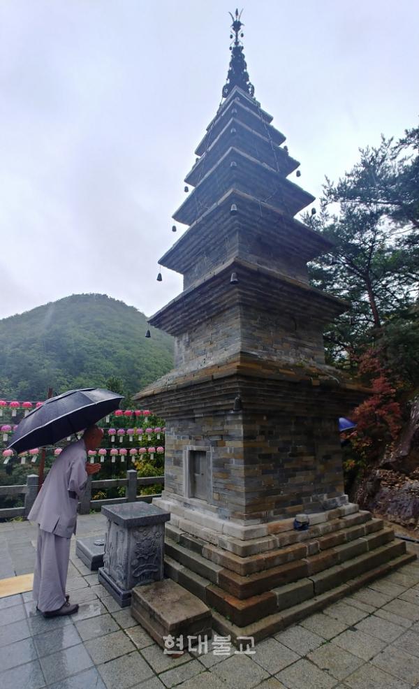 제18호 태풍 '미탁'의 영향으로 장대비가 쏟아지던 10월 2일, 정암사 주지 천웅 스님이 수마노탑 앞에서 탑의 국보승격을 기원하는 기도를 올리고 있다.